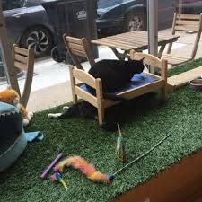 Kawaii Kitty Cafe in Queen Village is Meow Open